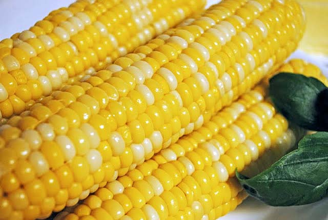 Perfect Corn on the Cob 123