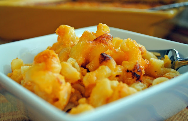 Creamy Cheese and Macaroni