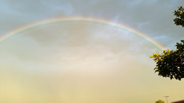 Rainbow at work